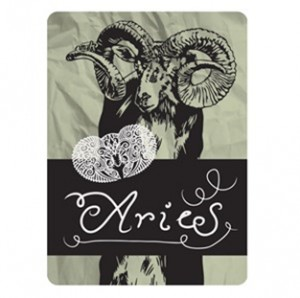 4Fun Aries Standard Scarf